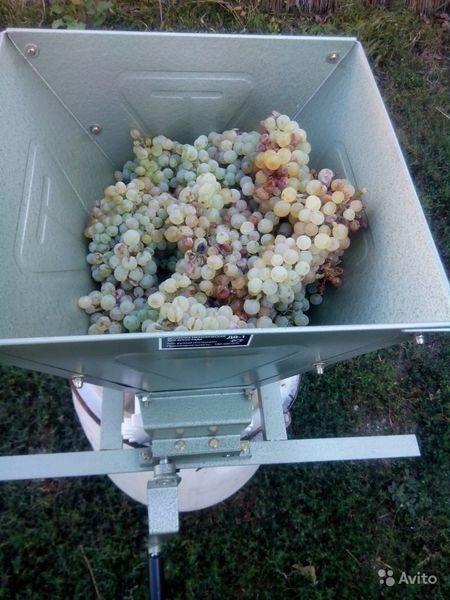 куплю давилку для винограда в сочи авито оборудование для
