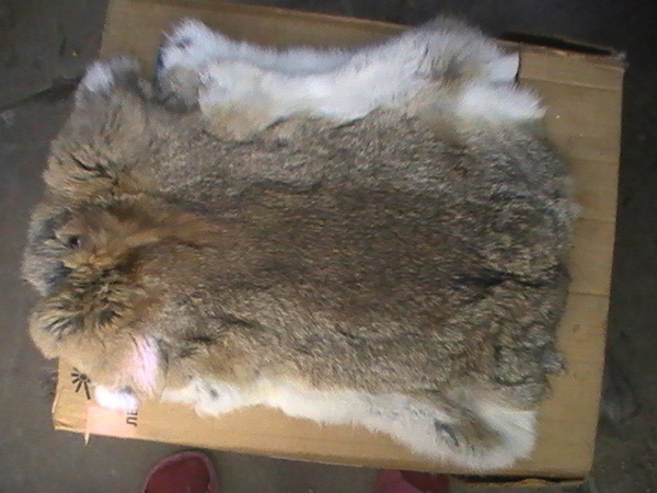Выделка кроличьих шкурок своими руками 24
